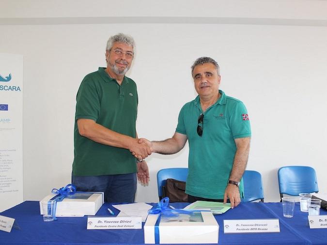 Accordo Arta Centro Studi Cetacei