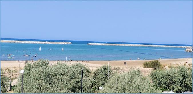 Foto del tratto di mare nei pressi delle dica foranea